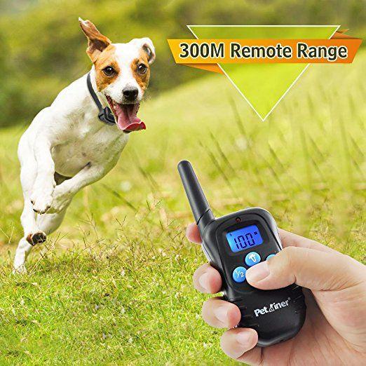 Amazon Com Petrainer Pet998dbb2 Dog Shock Collar Waterproof And