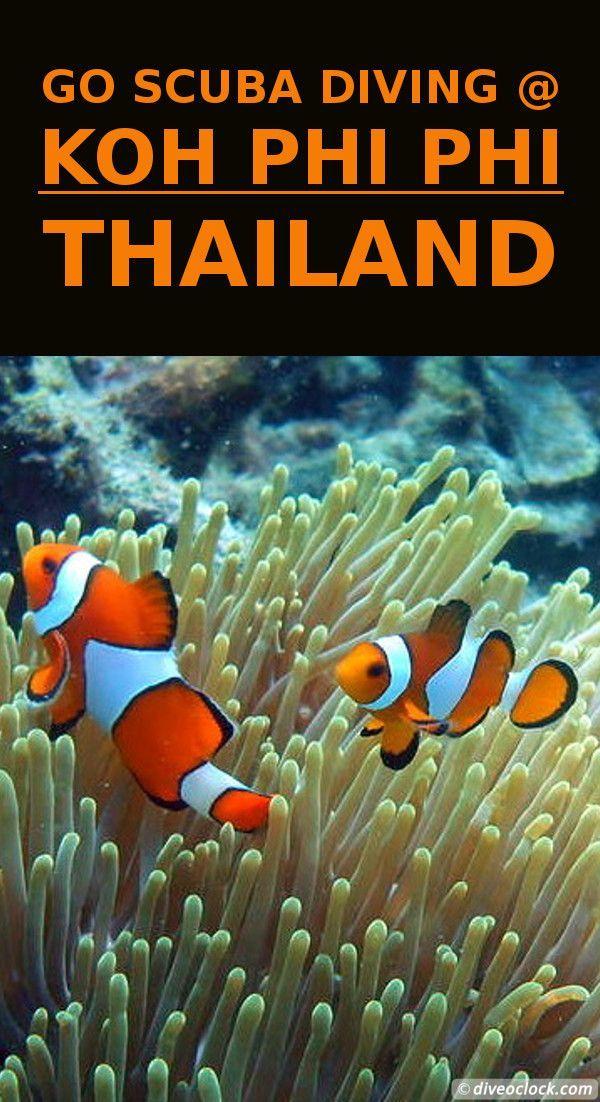 Dive Destination: Koh Phi Phi, Thailand