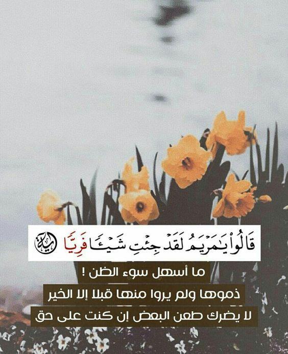 Pin On From The Quran Spirit Fqs في ظلال القران Kuran Ruhundan