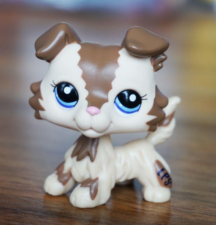 6 99 Littlest Pet Shop Lps 2210 Cream Tan Brown Collie Dog Blue