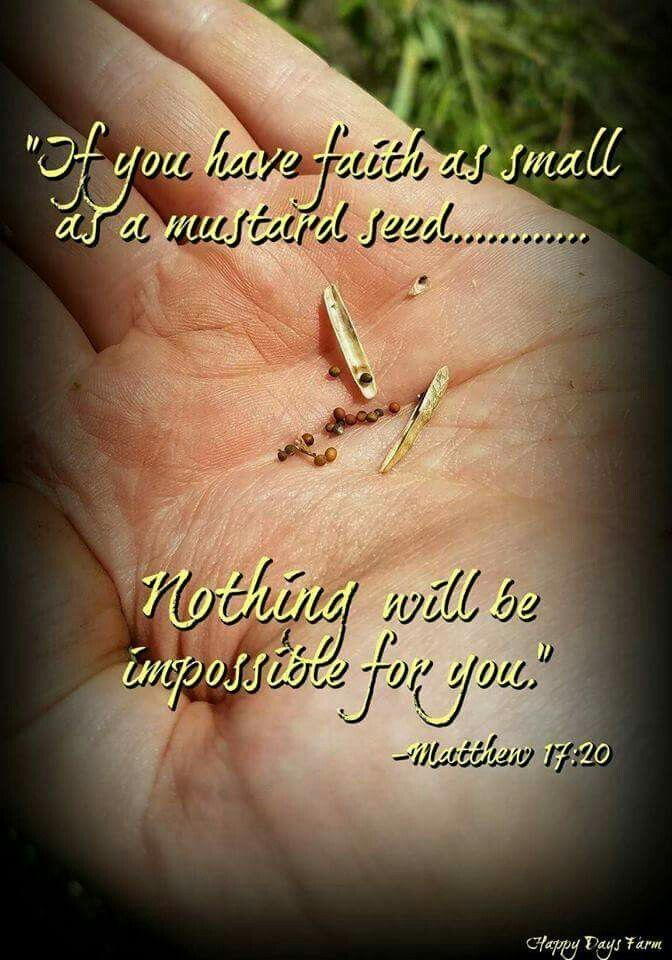 Pin by sadie bohn on prayers and gods word pinterest faith bible scriptures bible verses quotes jesus bible jesus christ have faith encourage quotes inspire quotes spiritual gifts spiritual thoughts negle Images