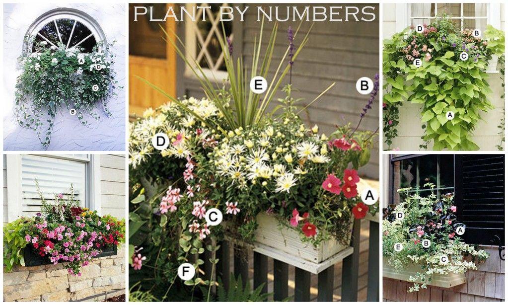 Ten DIY Window Box Planter Ideas with Free Building Plans