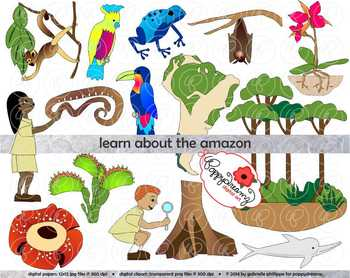 Learning About The Amazon Rainforest Clipart By Poppydreamz Clip