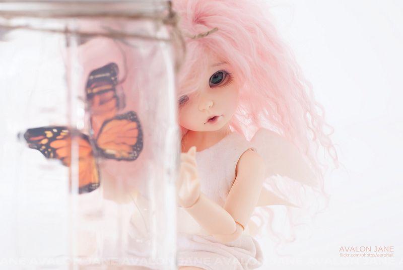 Butterfly by oOnyaOo.deviantart.com on @deviantART