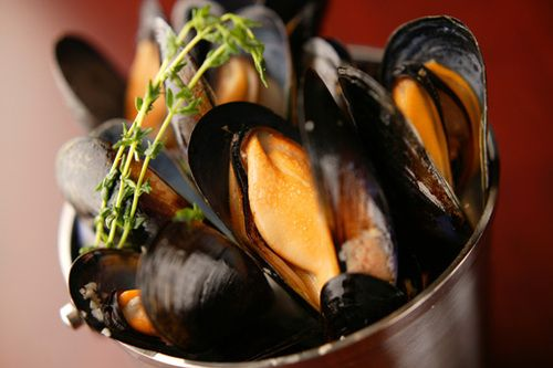 cup a mussels snack