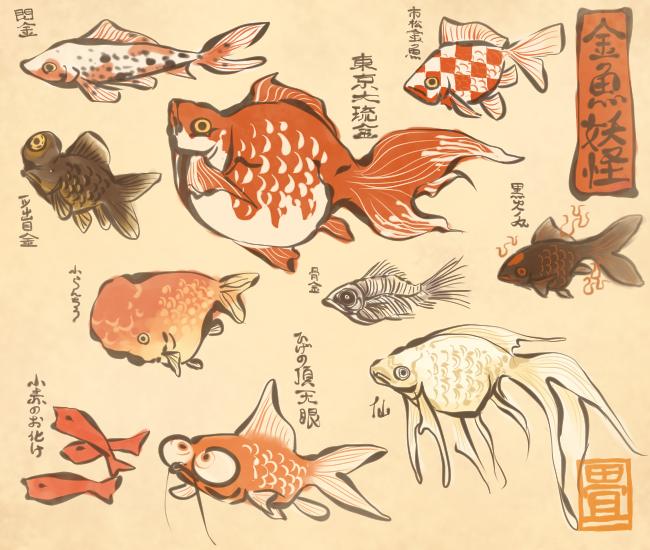 花日和 畳 On Twitter Goldfish Art Japanese Art Japanese Illustration