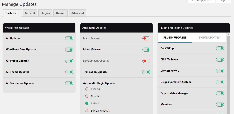 Automatic Updates WordPress