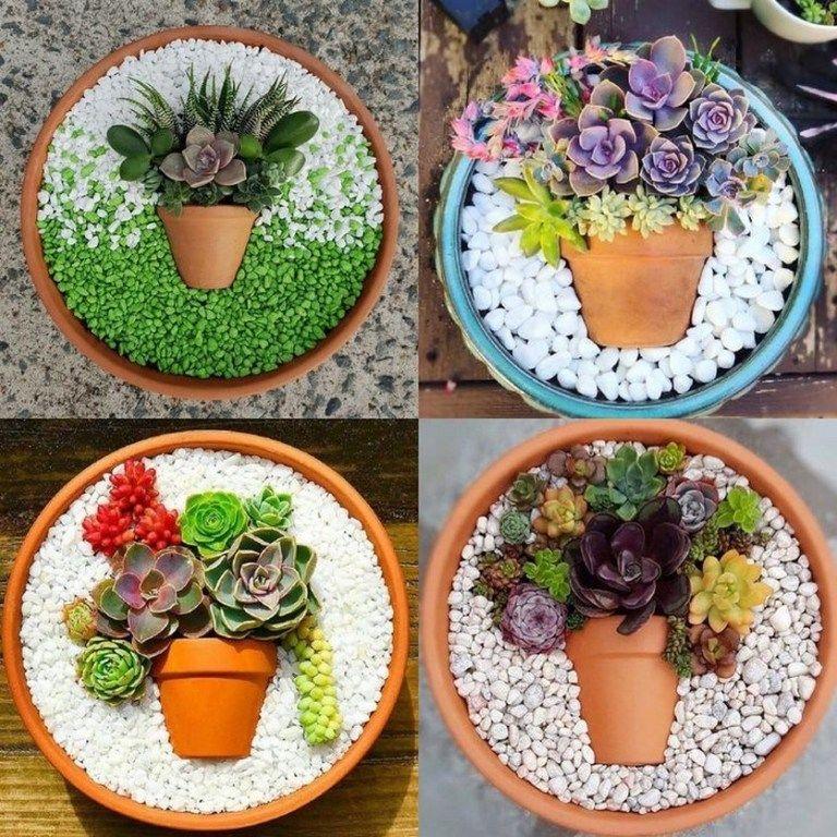 64 Charming Succulent Indoor Garden Ideas 2019 23 Succulent Garden Indoor Succulents Indoor Succulent Garden Diy