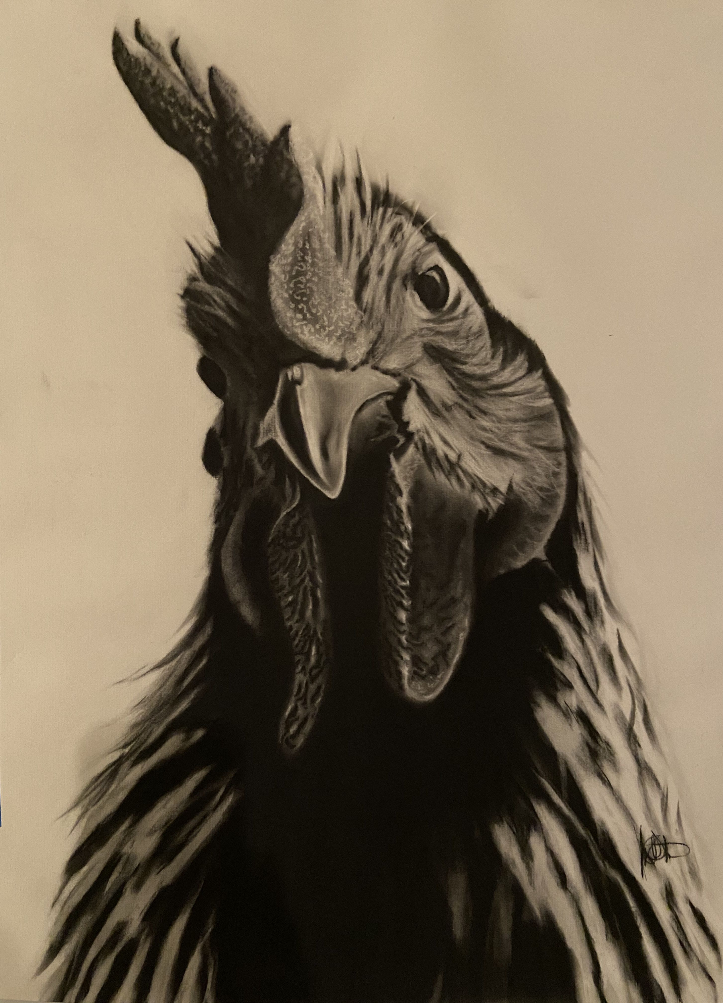 Pin By Jsteng On Charcoal Drawings
