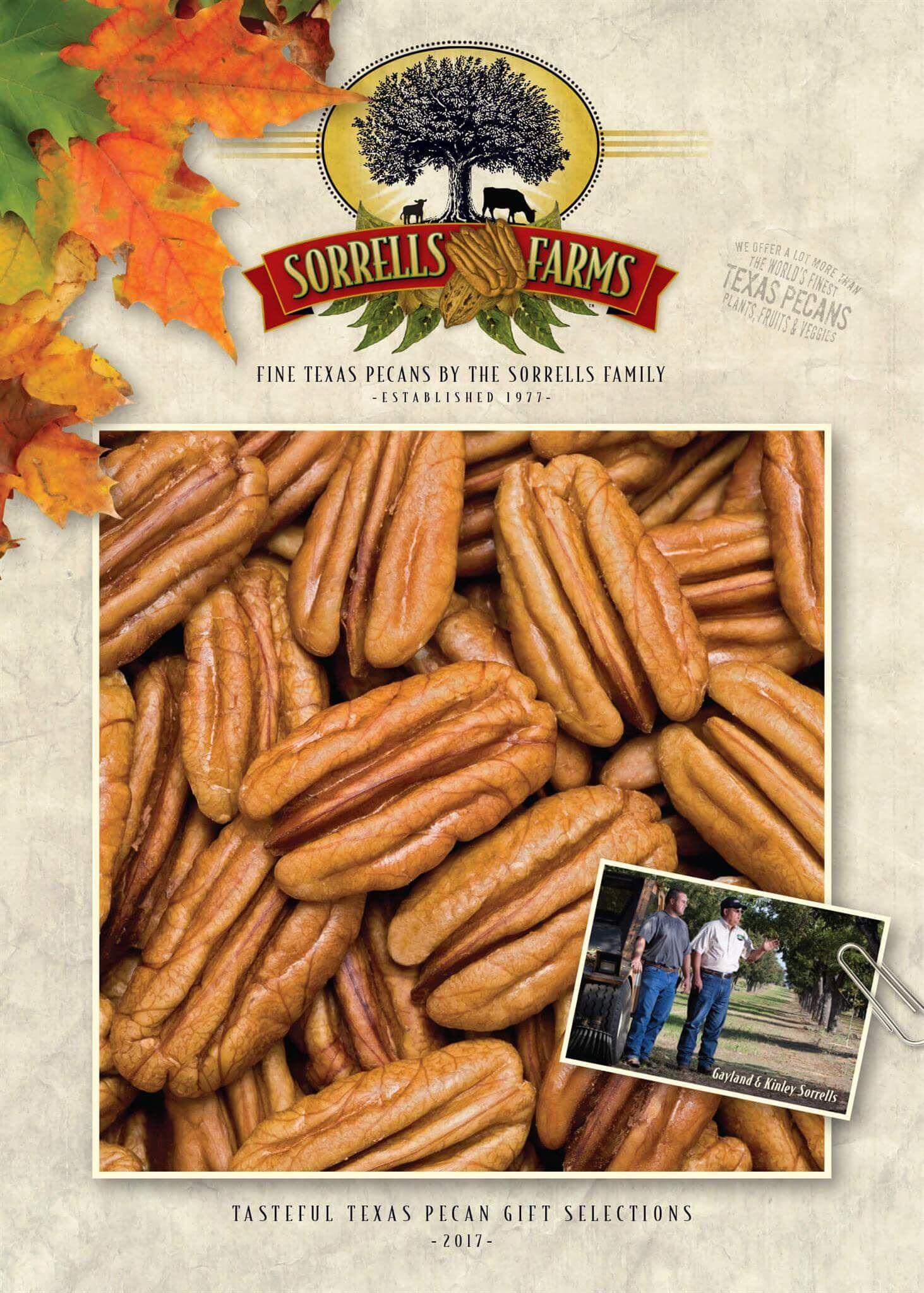 Farm Fresh Texas Pecans Top Quality Pecans For Sale