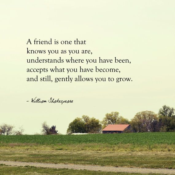 A Friend Is On That Knows You As You Are Understands Where You Have