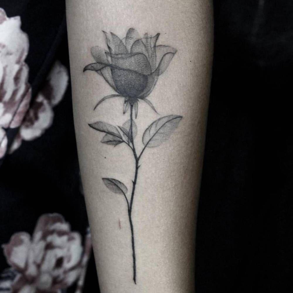 X Ray Flower Tattoo On The Left Inner Arm Tattoo Artist: Fine Line X-Ray Rose Tattoo On The Left Inner Forearm