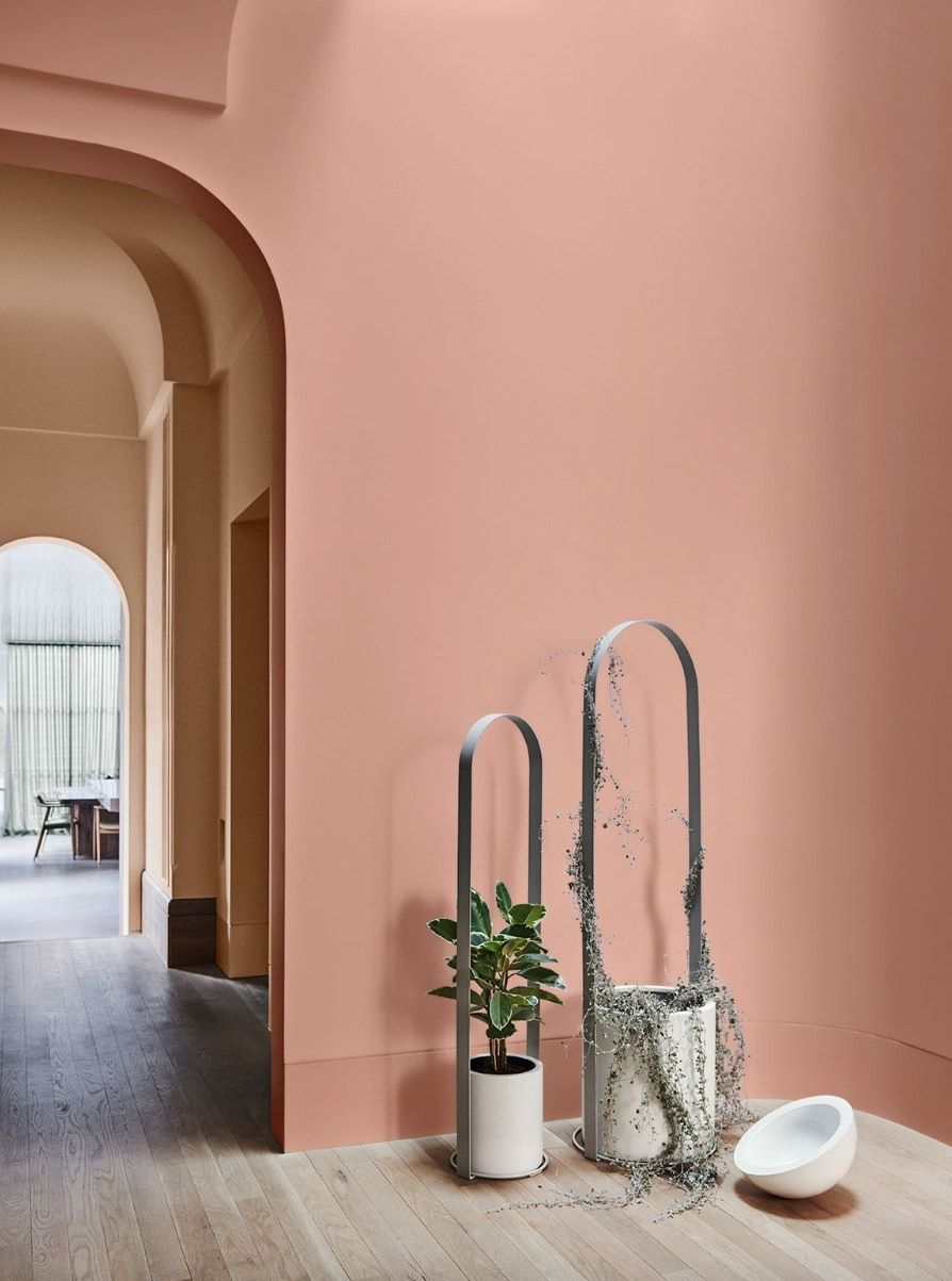 the colours that will dominate homes in 2019 earthy home on interior home paint schemes id=17825