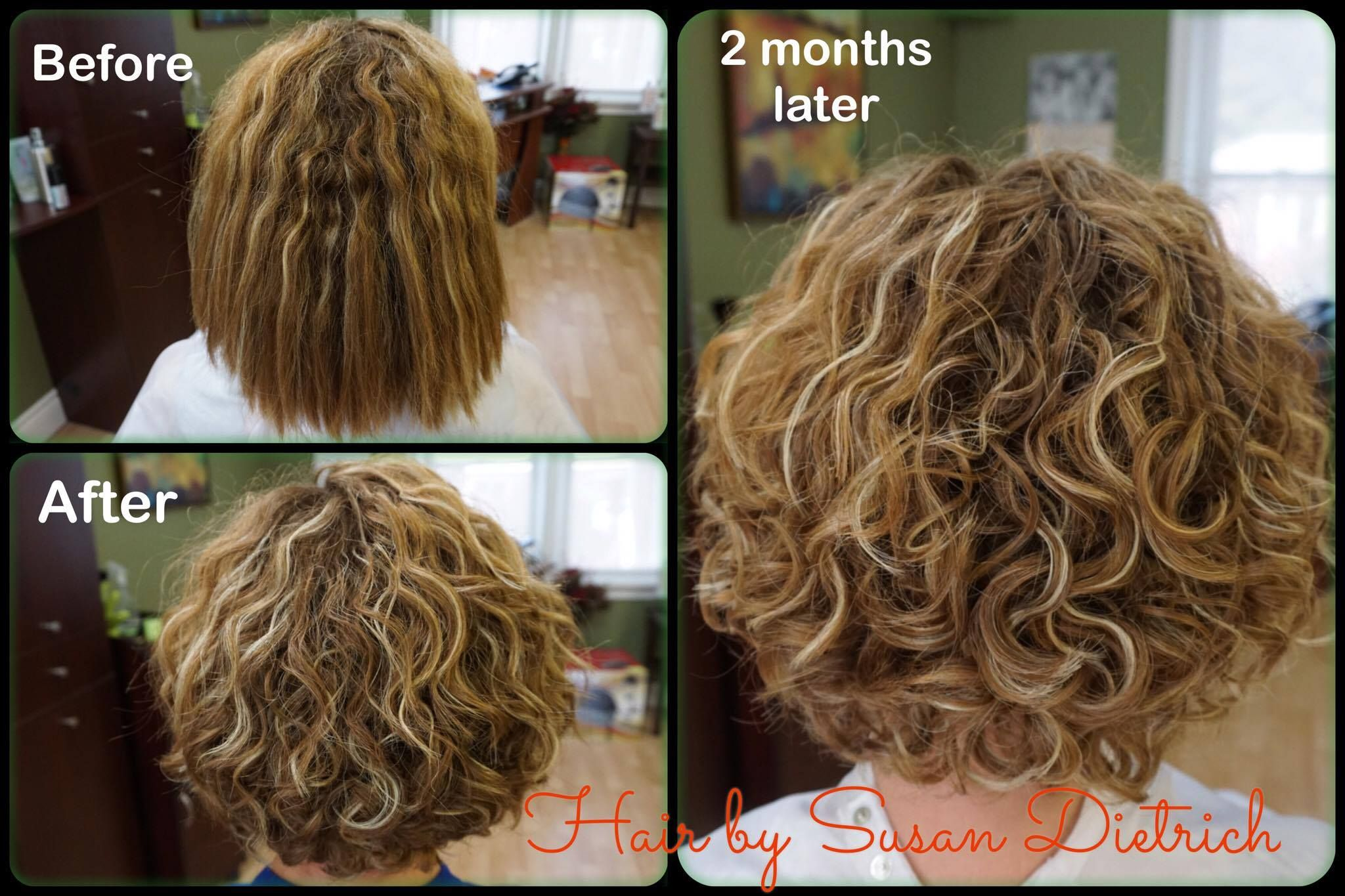 Class Act Hair Design In Waterloo Shows How Taniajane Naturally Curly Helps Heal Those Curls Curly Hair Styles Permed Hairstyles Short Permed Hair