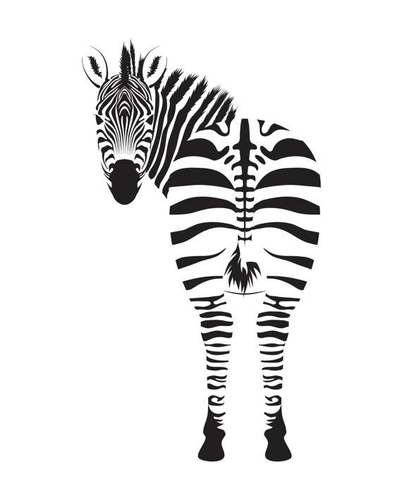 Zebra Print Red And White 8x10 Print Animal By Littlemarbledesign Ilustracoes Estampas Fotos