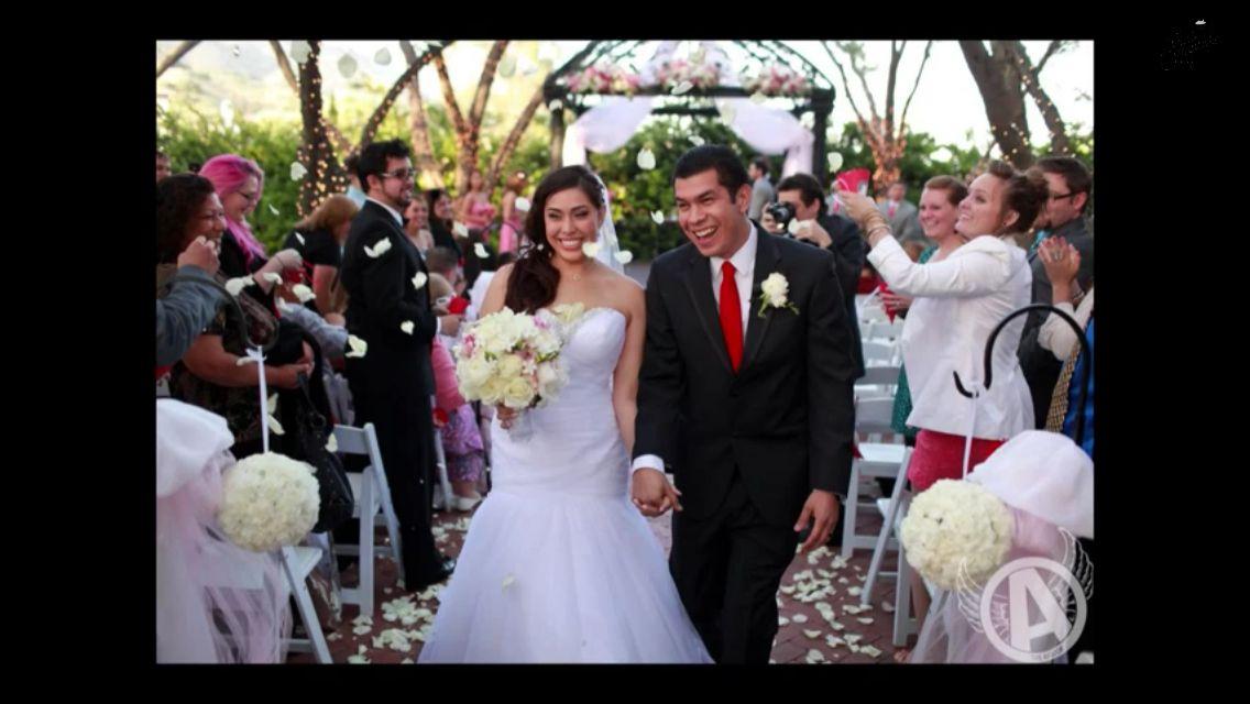 Cupquake wedding pictures