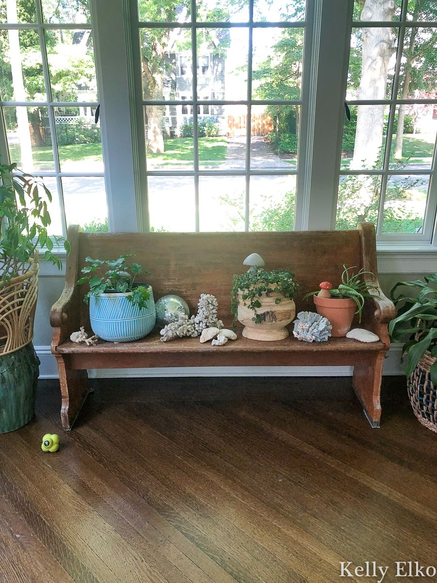 She bought this antique church pew before she realized a swarm of carpenter bees were nesting in it! kellyelko.com #churchpew #vintage #vintagedecor #antique #antiquedecor #farmhouse #farmhousedecor #carpenterbees #bees #sunroomdecor #plants #houseplants #plantlady #gardening #gardens