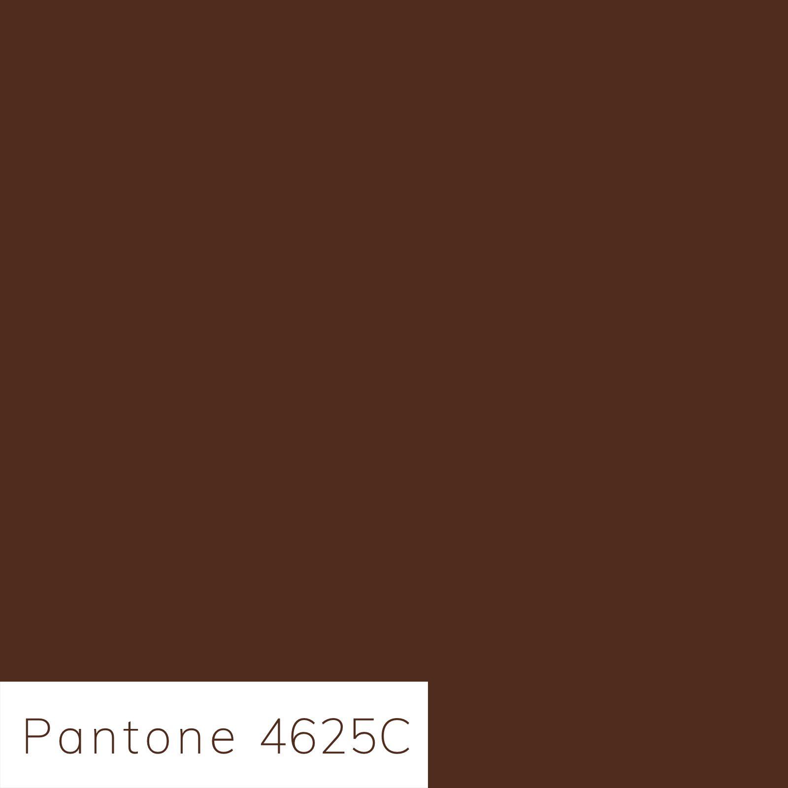 Hot Chocolate Pantone Pantone Brown Pantone Pantone Color