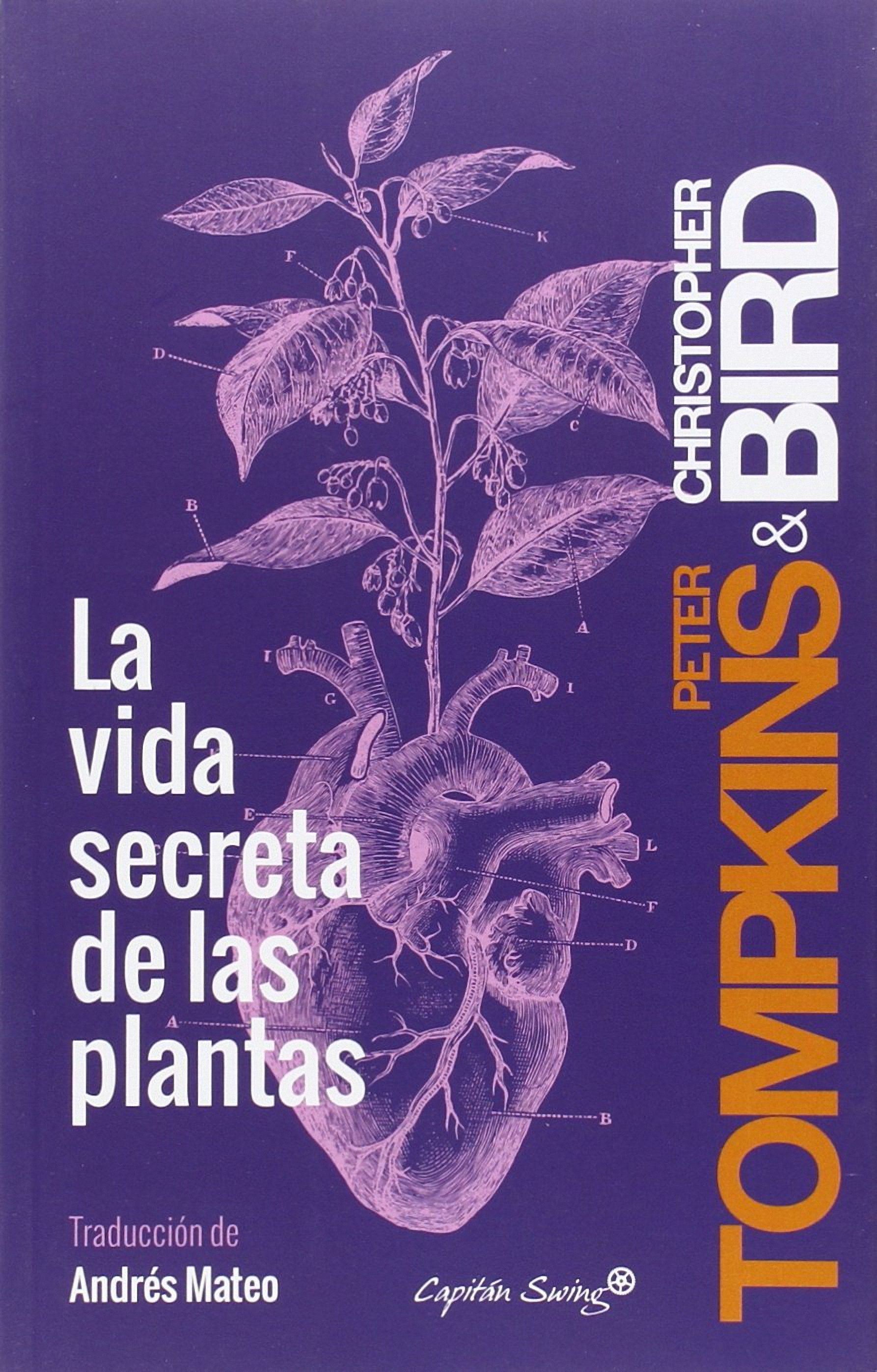 La Vida Secreta De Las Plantas Peter Tompkins Book Cover Ideas