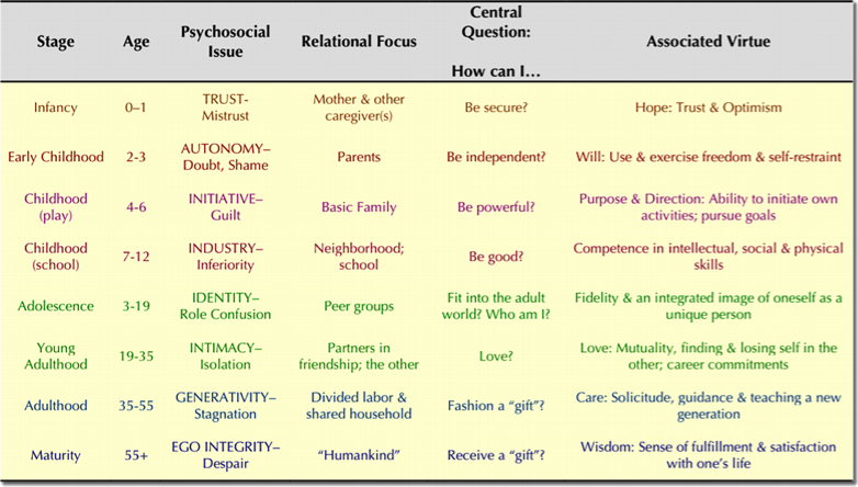 the eight stages of development by erikson psychology essay 8 life stages erikson developed 8 life stages that we go through, or psychosocial  dilemma he theorized that we went through dilemmas or crisis at each stage of.