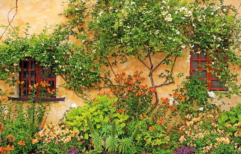 Superb Carmel Mission Garden