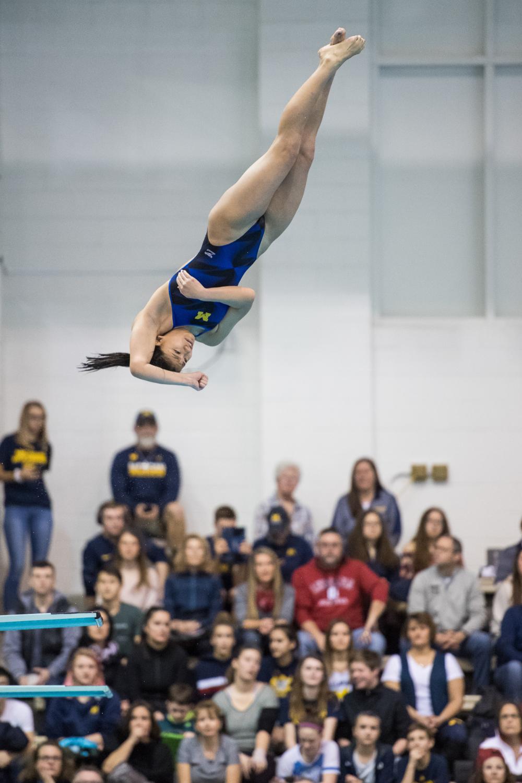 University Of Michigan Swimming And Diving