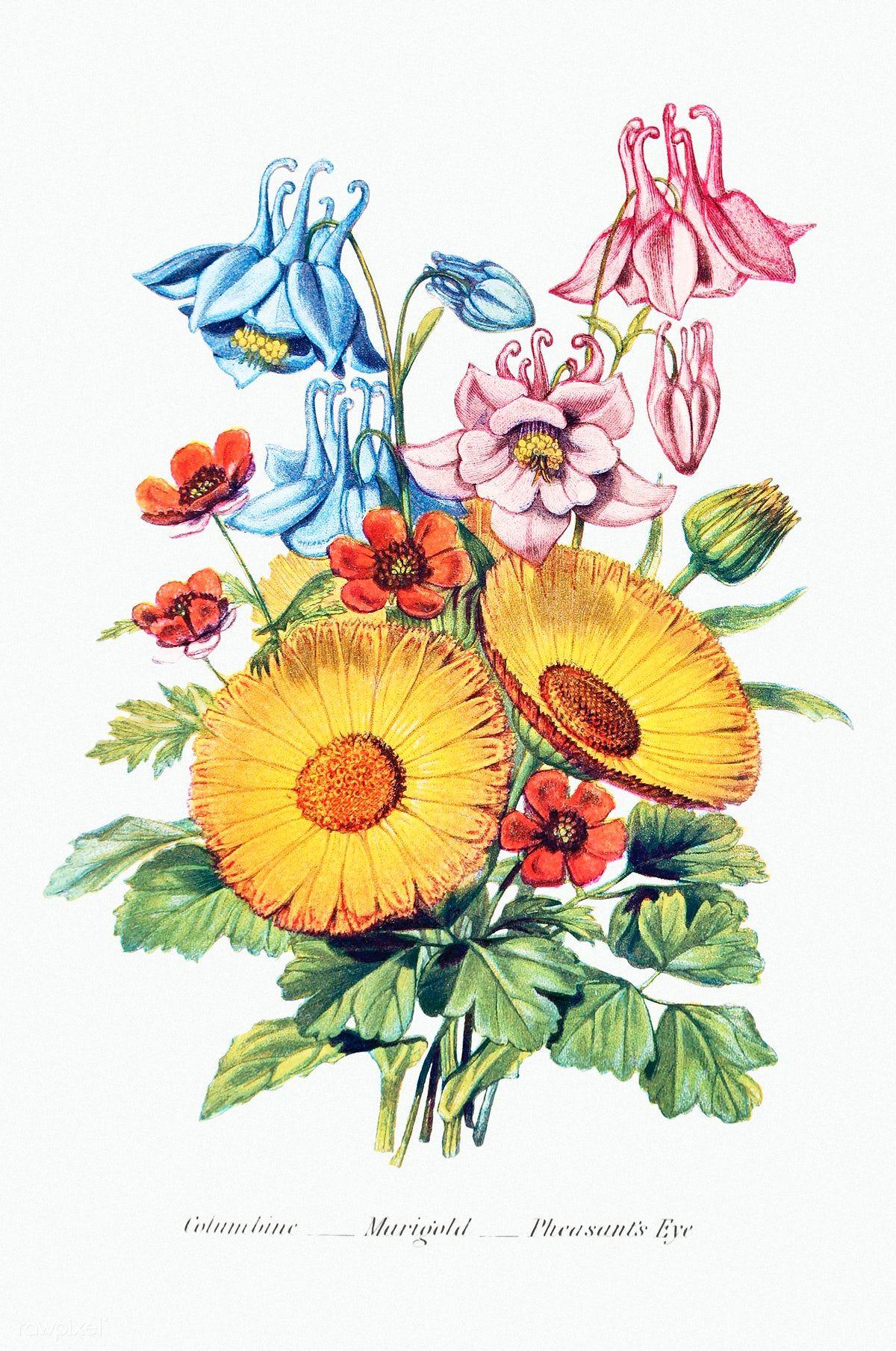 Download Premium Illustration Of Vintage Flower Bouquet Mockup 2098098 In 2020 Illustration Flowers Bouquet Flower Illustration