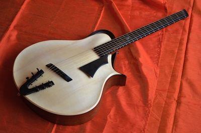 Sankey Guitars - Tortoise