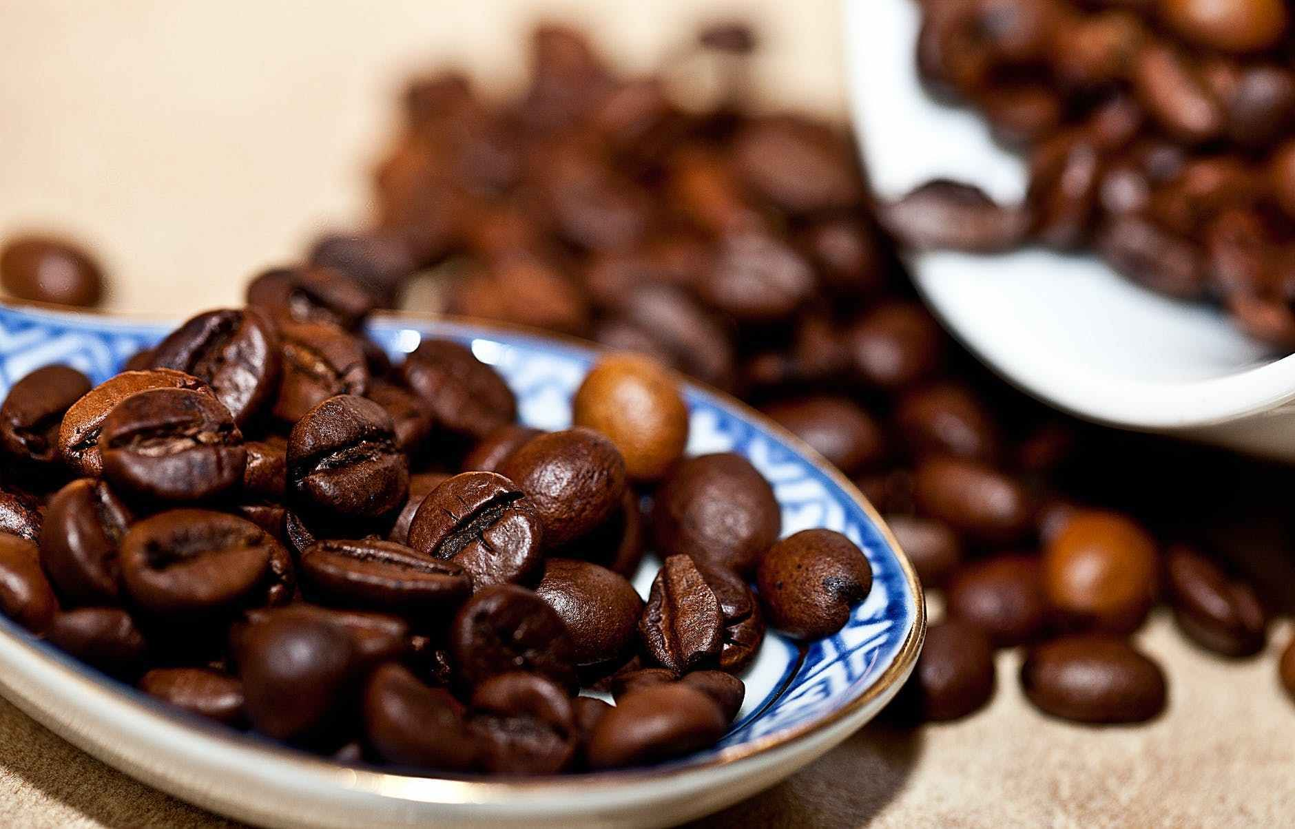 Kopi Robusta Coffea Canephora Schors Resep Kopi Kopi Kopi Arabika