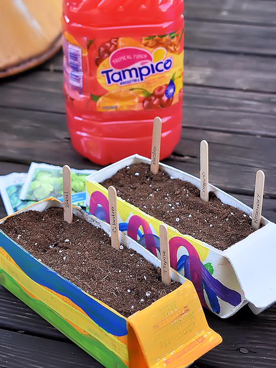 DIY Drink Carton Herb Gardens | Our Kid Things