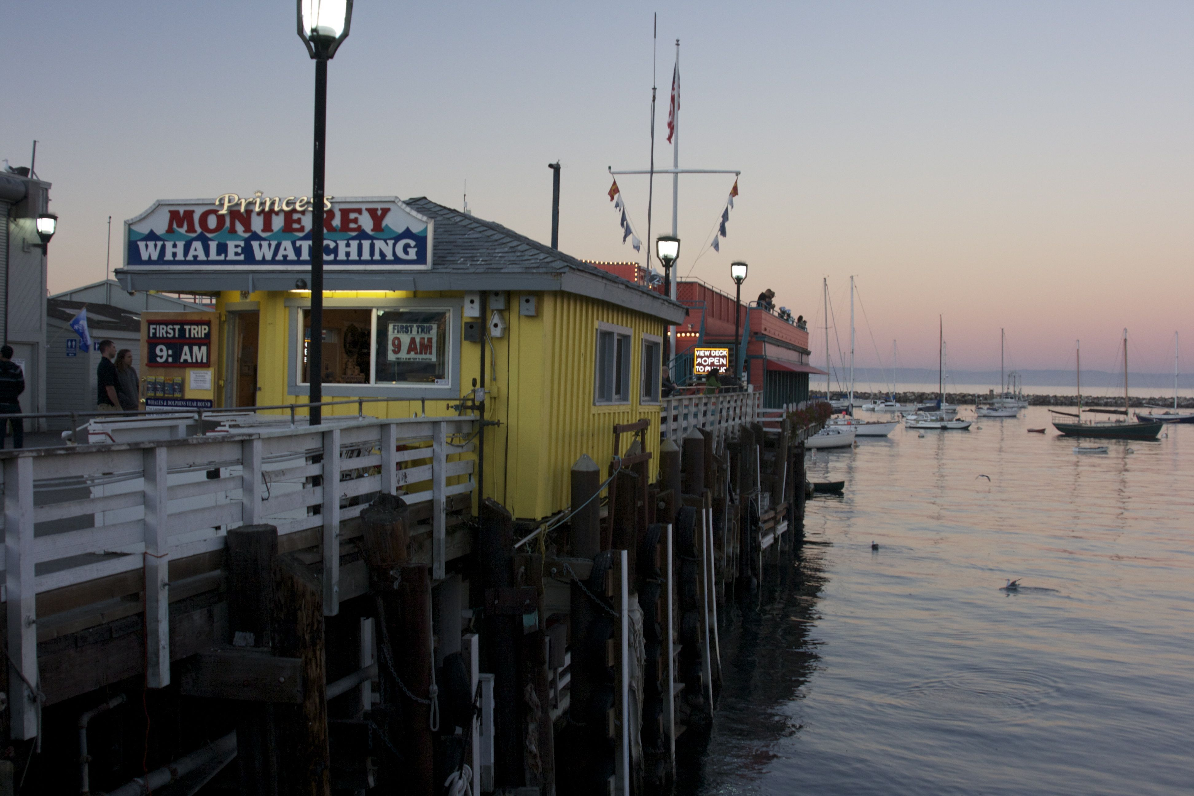 Beautiful colors of the fishing pier in monterey bay for Big sur fishing