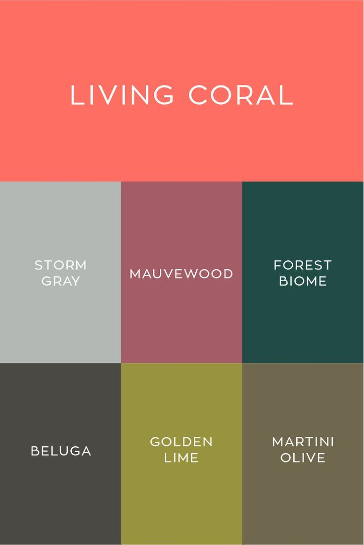Pantone 2019 Color Of The Year Living Coral Color Palette With Cooler Colors Like Grays Greens Pantone Colour Palettes Coral Colour Palette Pantone Color