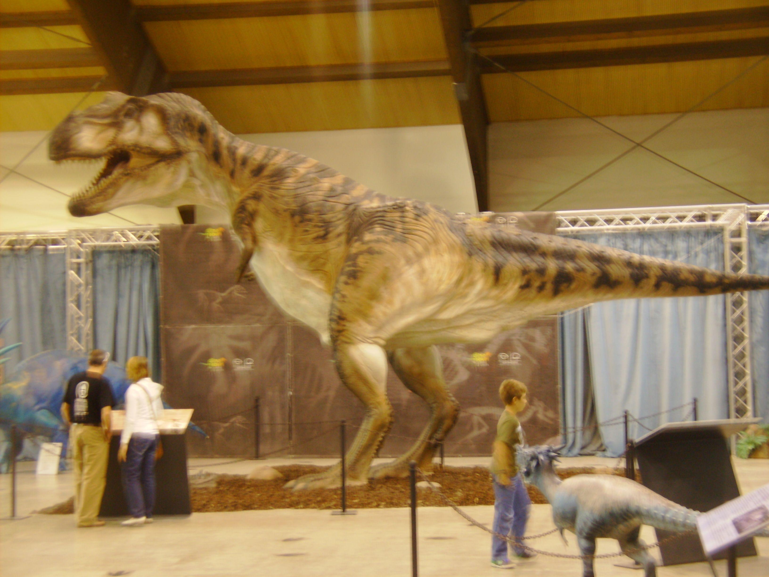 riproduzione di un tirannosauro rex