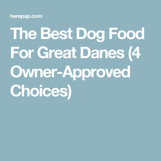 The Best Dog Food For Great Danes (4 Owner-Approved Choices)