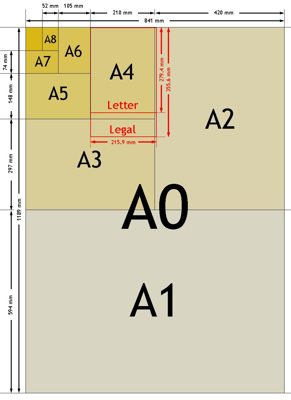 Картинки а2 формата, дню рентгенолога кот