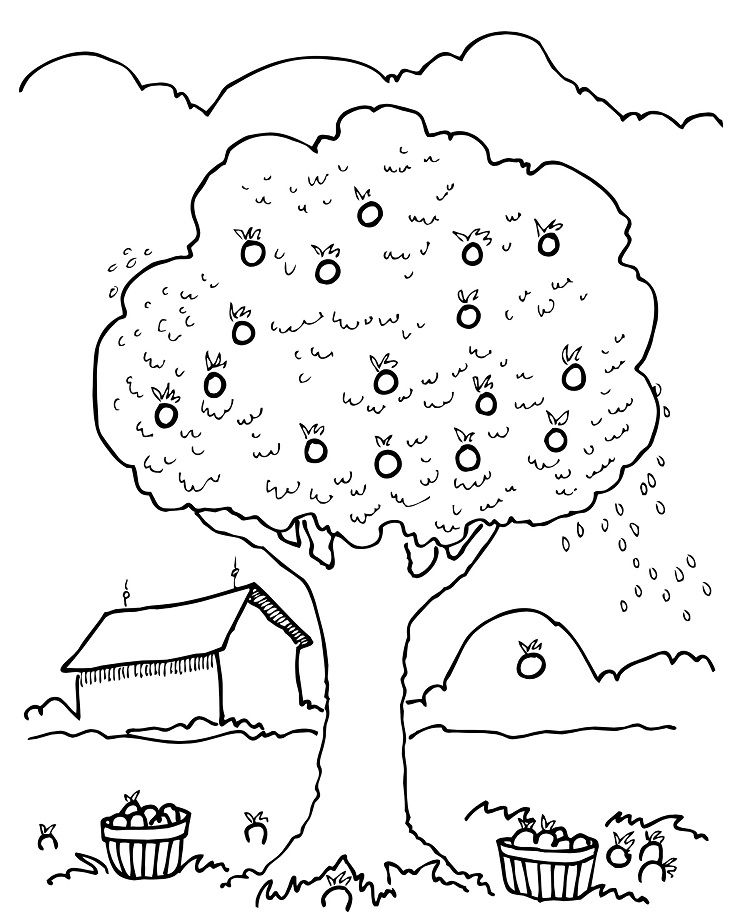 children picking apples coloring pages - photo#21