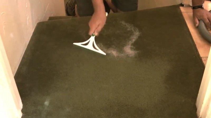 So wird man lästiges Tierhaar in der Wohnung los. Diese Tipps retten jeden Pfötchenliebhaber! Fensterwischer