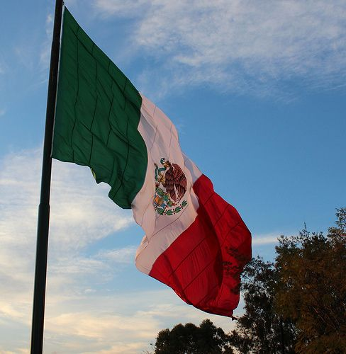 Mexican Flag in 2020 Mexican flags, Chicano love