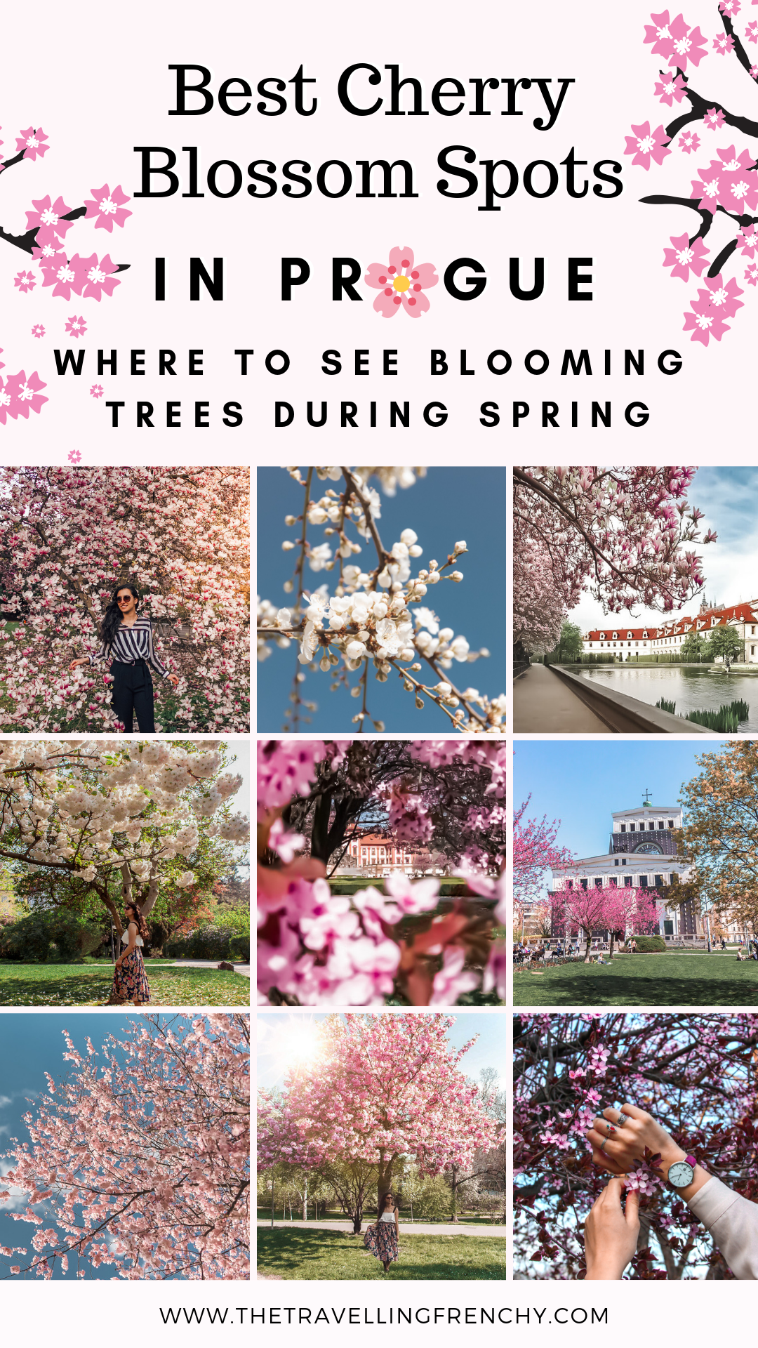 Top Cherry Blossoms Spots In Prague The Travelling Frenchy Prague Spring Day Trips From Prague Prague Old Town