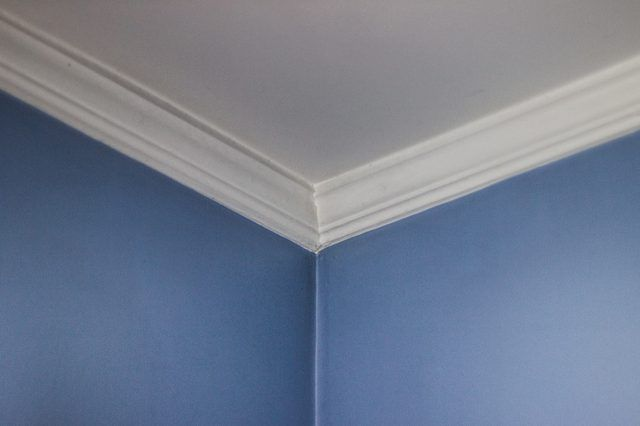 How to Remove Toxic Mold in Your Home Projects to Try Pinterest