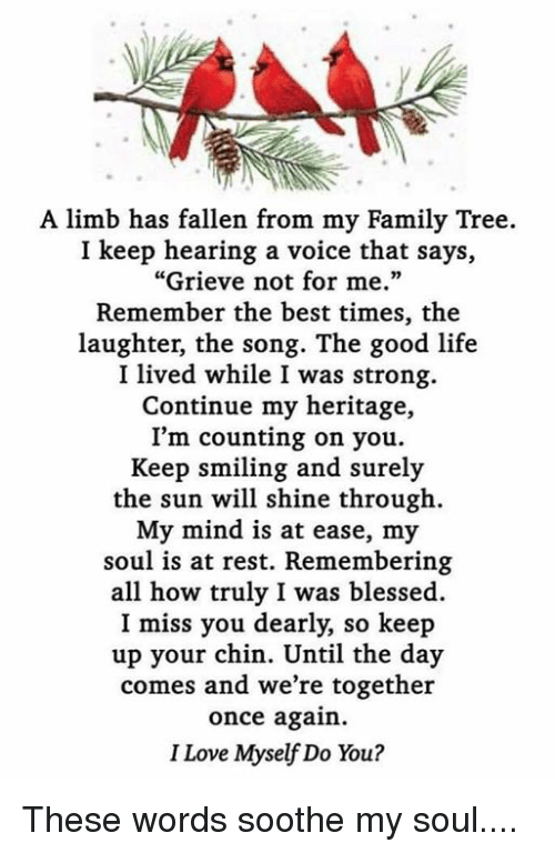 A Limb Has Fallen From The Family Tree : fallen, family, Blessed,, Family,, Life:, Fallen, Family, Tree., Hearing, Voice, Says,,