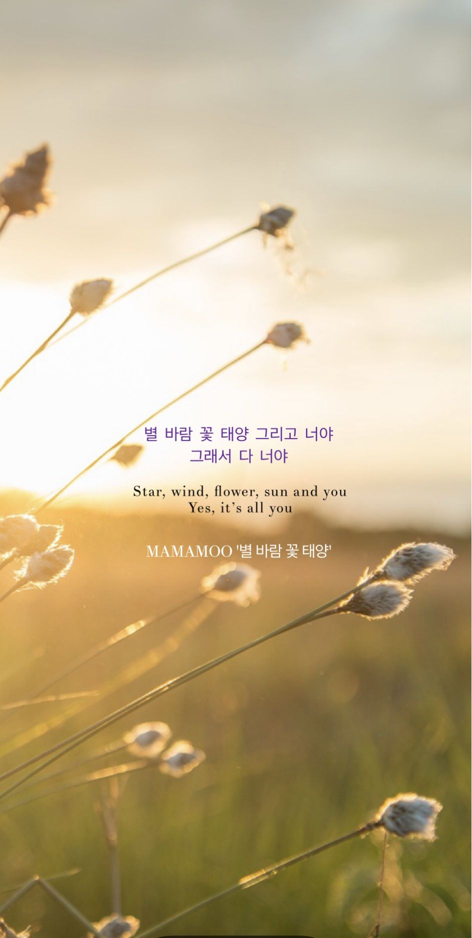 Jean21 On Twitter Mamamoo Flower Lyrics Song Lyrics Wallpaper