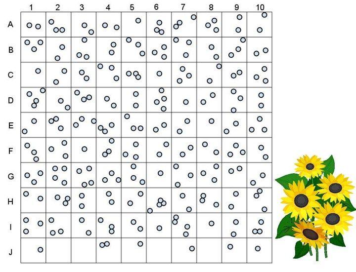 Random Sampling Estimating Population Size – Ecology Worksheets