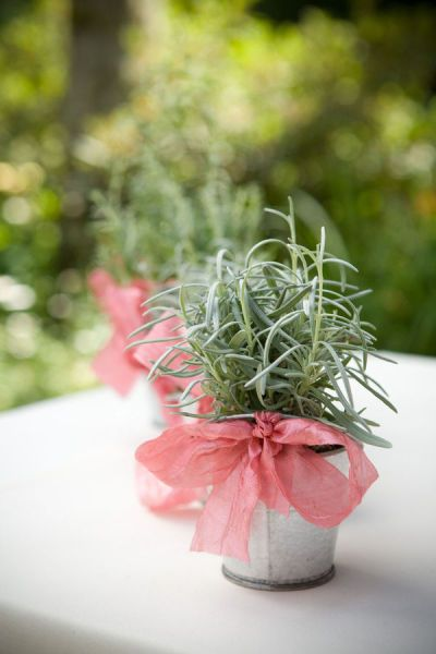 Wedding Flowers: The Gift That Keeps Giving. I like this idea ...