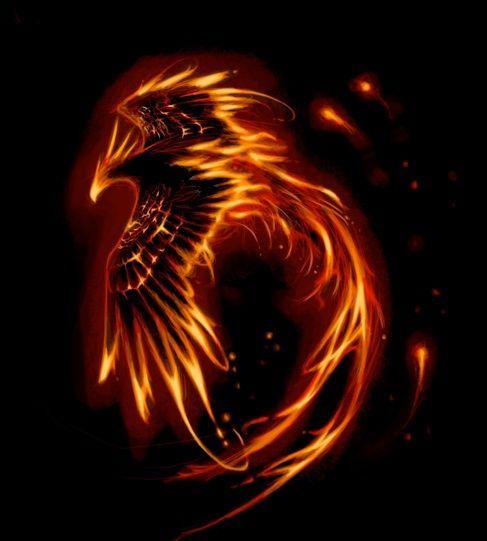 Phoenix | Tattoo-Bewertung für Tattoos, Vorlagen und Motive ...