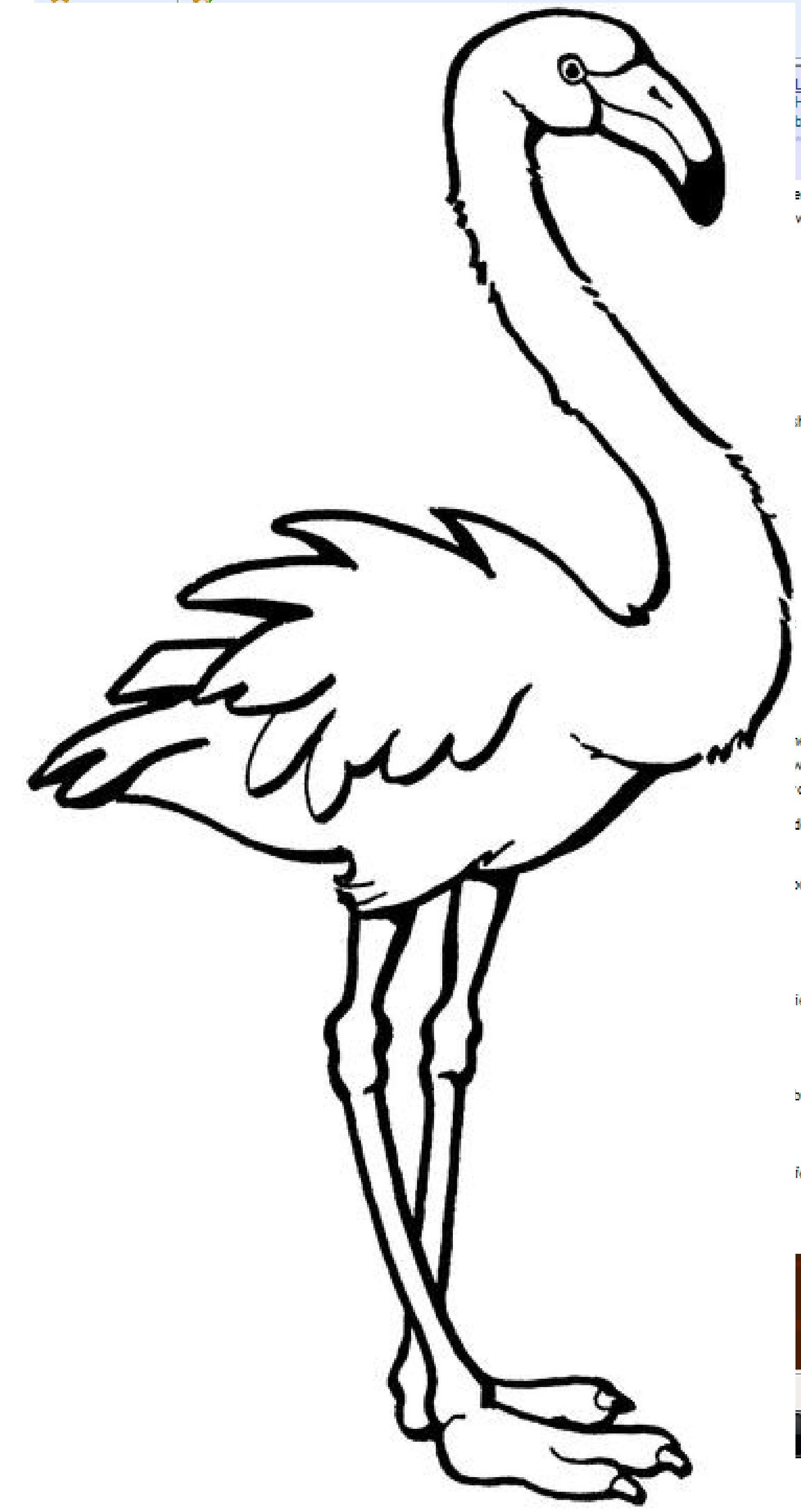 embroidery flamingo | needle arts | Pinterest