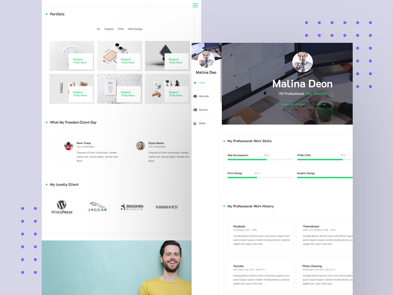 Free Wordpress Theme ( Online CV Resume ) by aThemeArt
