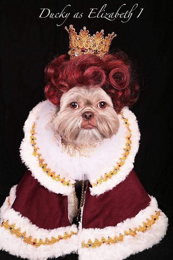 decc4868bf32 Custom Order Royal King Queen Prince Princess Robe and Crown Halloween  Costume for Dogs Pets Puppies