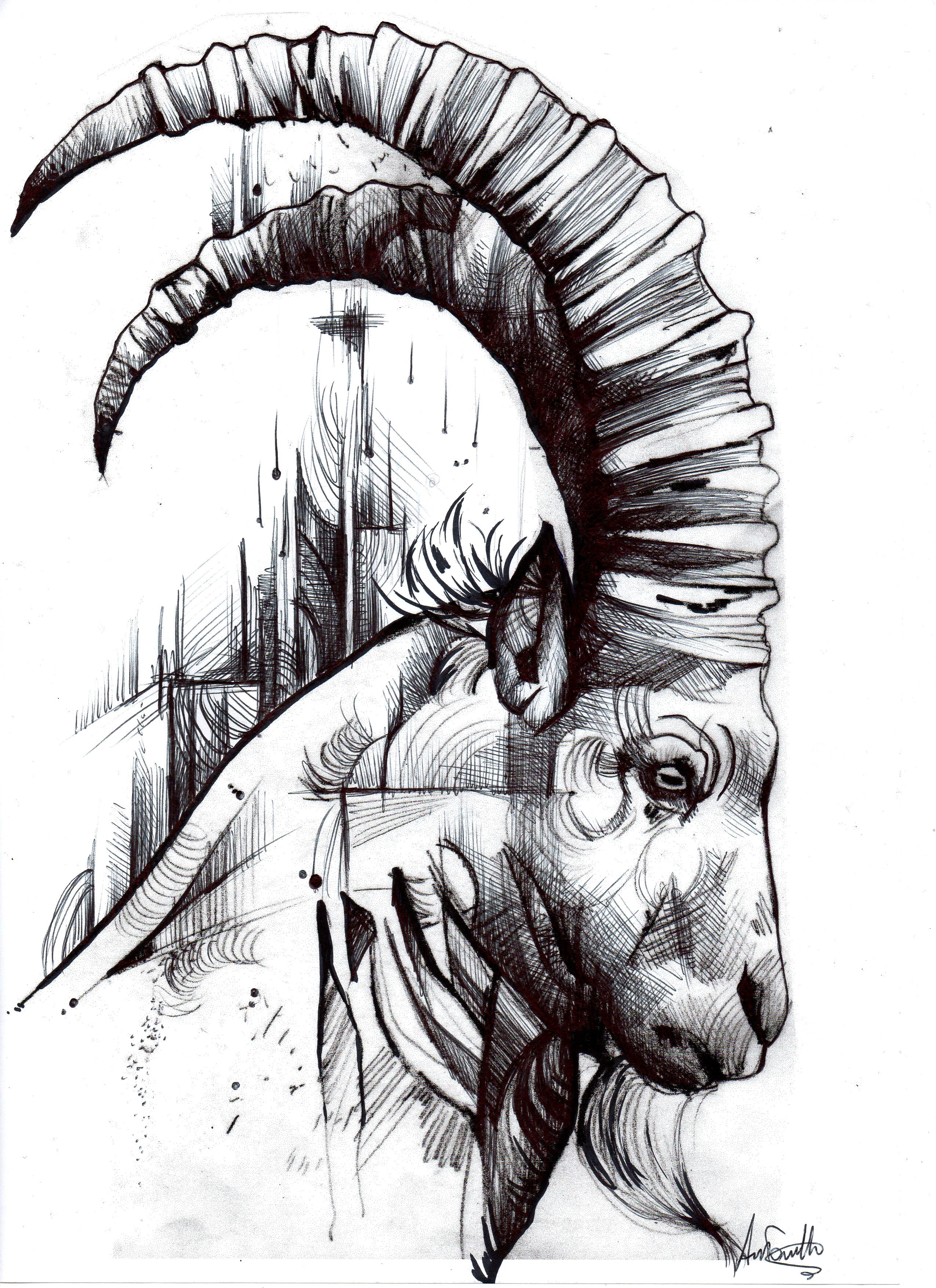 Capricorn Special Edition Signed Fine Art 6