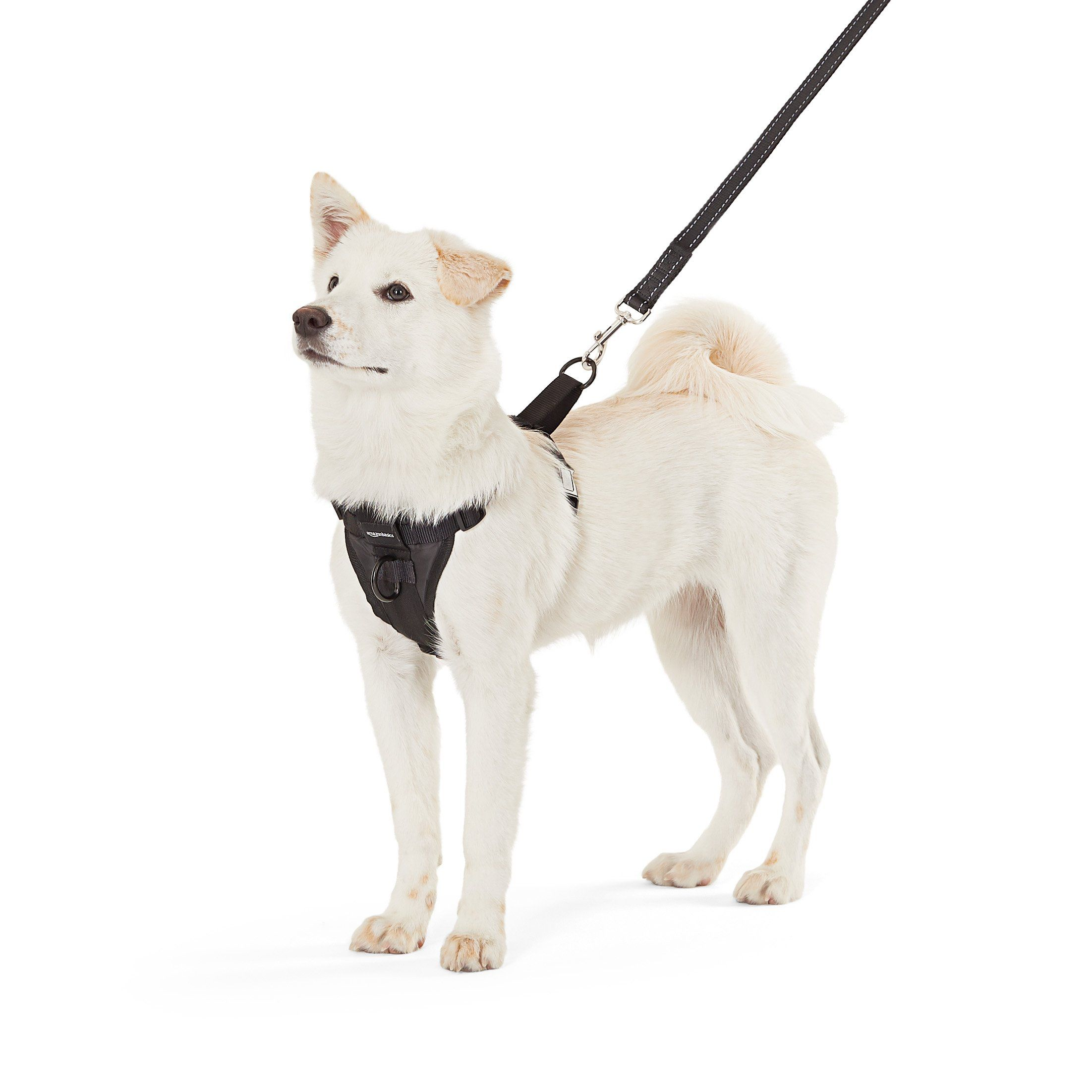 Amazonbasics Dog Harness Medium For More Information Visit